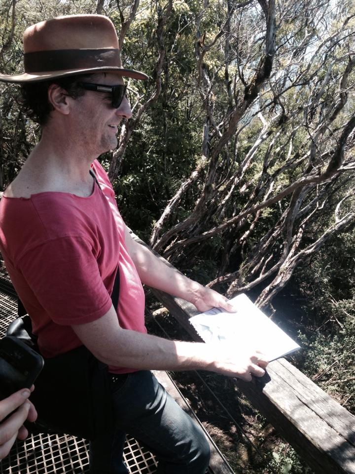 mount warning summit,Mark drawing